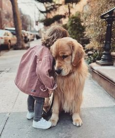 Childhood, Dogs, Animals, Infancy, Animales, Animaux, Pet Dogs, Doggies, Animal