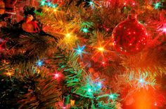 Celebrate Christmas 365 Days Of The Year!: Christmas Tree Lights