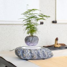 This magnetic floating planter is truly magnificent. Designed to levitate your small house plant and planter, the planter base includes an LED light and ionizer for improved air quality. A real conversation piece for the home or office.