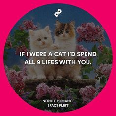 Tag your crush because he/she is totally worth it!  Follow @8factflirt for infinite romantic pick up lines! by 9gag
