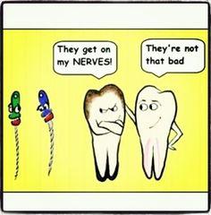 Teeth tooth dental hygiene root nerve