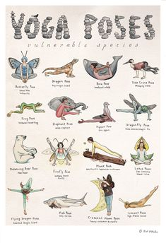 This detailed hand-illustrated yoga poster features sixteen characters demonstra. This detailed hand-illustrated yoga poster features sixteen characters demonstrating sixteen poses. Each pose honors an endangered or vulnerable. Yoga Routine, Yoga Flow, Yoga Meditation, Yoga Fitness, Vulnerable Species, Sup Yoga, Bikram Yoga, Yoga Posen, Relaxing Yoga