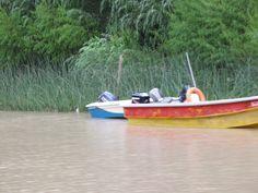 Bote en el Delta del Tigre