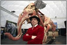 The controversial Body Worlds creator Gunther von Hagens opens his latest anatomical exhibition at the Neunkirchen Zoo in the state of Saarland, Germany. The 'anatomical safari' contains over 100 animals in various degrees of dissection showing von Hagen's famed plastination process.