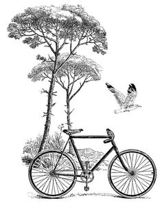 Bicycle Stamp - Eleanor's | Stylish Bicycle Accessories for Ladies