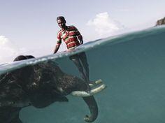 Elefante caminando bajo el agua