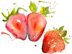 The Strawberry symbolizes perfection & righteousness and also represents Venus, the goddess of love. Watercolor Fruit, Fruit Painting, Watercolor Cards, Watercolor Paintings, Watercolours, Strawberry Art, Strawberry Fields, Food Illustrations, Illustration Art