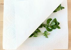 How to Dry Oregano in Microwave - Tip from TheFrugalGirls.com
