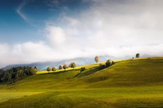 Beautiful Mood at Emmental (Switzerland) by franzengels trees landscape switzerland clouds gallery moody hills landscape photography Schweiz Landschaftsfoto Switzerland, Travel Photos, Golf Courses, Tourism, Country Roads, Boat, Explore, Vacation, Beautiful