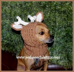 Ravelry: Deer Antler Dog Snood pattern by Sara Sach