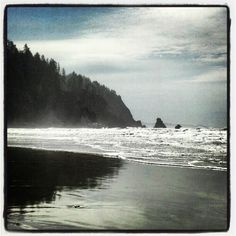 Oregon Coast...Oswald West State Park....love this place!!!