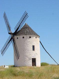 Con el reciente aumento de la popularidad de las fuentes de energía renovables y alternativas, energía eólica y los molinos de viento se han convertido en una opción legítima para incorporar los propietarios de tierras rurales