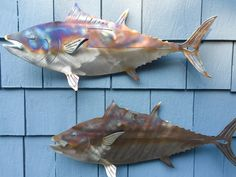 Set of 3 Stainless steel Flamed Tuna for walls - Fish In The Garden LLC