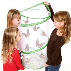 The Painted Lady caterpillars this comes with are fun but we've taken to raising black swallowtails rather than reordering the kit. Highly recommend this butterfly enclosure.