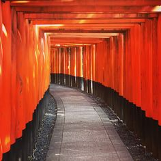 Fushimi Inari Taisha, Kyoto in Japan 2017