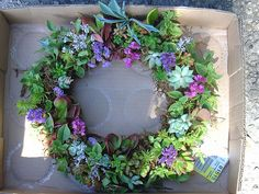 #succulent #wreath