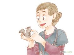 How to care for your Sugar Glider