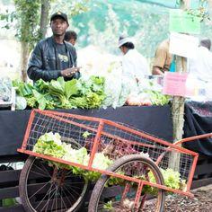 Fourways Farmer's Market Farmers Market, Trek, Sustainability, South Africa, Places To Go, Urban, Marketing, Children, Image
