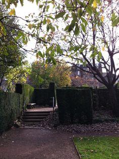 Autumnal afternoon (Dunbar's Close Garden, Edinburgh)