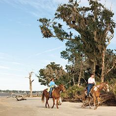 The South's Most Secret Beaches | Driftwood Beach/Jekyll Island | SouthernLiving.com