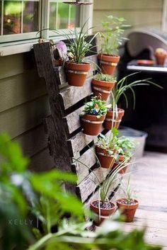Love the vertical gardens