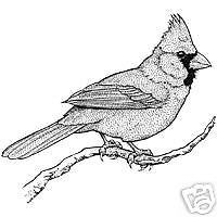 bird stamps rubber | Details about RUBBER STAMP - BIRD - CARDINAL ON BRANCH - LARGE
