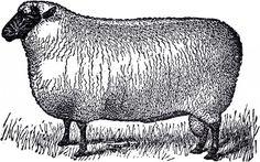Primitive House Clip Art | Primitive Vintage Sheep Image