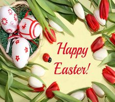 """Inscription """"Happy Easter"""" surrounded by Easter eggs and tulips Ostern Wallpaper, Happy Easter Wallpaper, Easter Bunny Pictures, Mermaid Invitations, Easter Wishes, Easter Printables, Love Rose, Easter Crafts, Red Roses"""