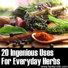 Please Share This Page: If you are a first-time visitor, please be sure to like us on Facebook and receive our exciting and innovative tutorials on herbs and natural health topics! Photo – © Pixelbliss – Fotolia.com We discovered a great tutorial for people who are interested in herbalism and looking for some simple, memorable [...]