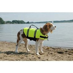 Paws Aboard Dog Life Jacket Yellow XXS 06 lbs ** See this great product.