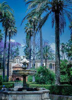 Game of Thrones set for Alcazar in Seville, Spain