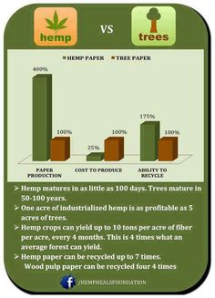 The fact that hemp is not being utilized drives me crazy! Look at hemp vs trees