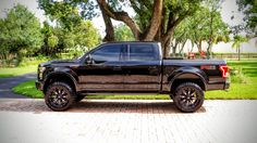 "2015 Ford F150 FX4 - 6"" ProComp Lift - 20x10  Fuel Throttle Wheels 35"" 12.5 Toyo Open Country MT"