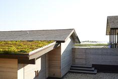 Shelter_Island_Ochre_Canvas_Home_garden_gardenista_roof_3.jpg 1,328×886 pixels