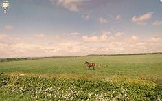 He finds beautiful, serene landscapes ...