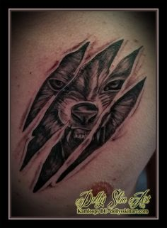 black and grey shading shaded wolf head face growl rip skin chest tattoo kamloops dolly's skin art