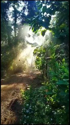 Beautiful Nature Scenes, Beautiful Photos Of Nature, Beautiful Nature Wallpaper, Beautiful Places To Travel, Amazing Nature, Aesthetic Photography Nature, Nature Aesthetic, Nature Photography, Applis Photo