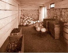 How to Create a Root Cellar for Storage.