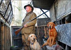 Expert Dog Trainer Robert Milner Says Heck No to Shock Collars Shock Collar, Behavior Modification, Hunting Dogs, Dog Behavior, Dog Training, Best Dogs, Collars, Labrador Retriever, Pets