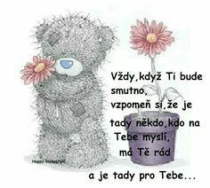 Bear Pictures, Motto, Teddy Bear, Queen, Humor, Humour, Teddy Bears, Moon Moon, Comedy