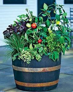 1000 Images About Whiskey Barrel Planter On Pinterest
