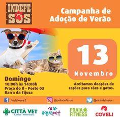 BONDE DA BARDOT: RJ: Campanha de adoção de cães e gatos acontece na Barra da Tijuca, neste domingo (13/11)