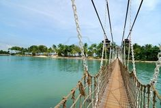 Suspension Bridge In Sentosa, Singapore.  For those of you who know me.. know this would never happen.. ha