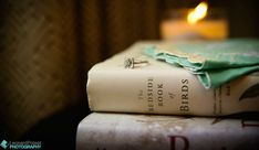 """A Wedding Ceremony Reading titled, """"A Marriage,"""" by Mark Twain I via Howerton+Wooten Weddings I Photo by Leonard Poteat Photography Wedding Ceremony Readings, Wedding Reception, Our Wedding, Wedding Ideas, Emma Evans, High Touch, Best Poems, New Fragrances, Mark Twain"""