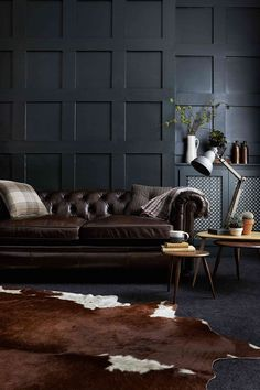 Blue carpet in lounge, or rug, dark blue wall, brown sofa. Gorgeous