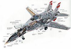 F-14 Tomcat cutaway