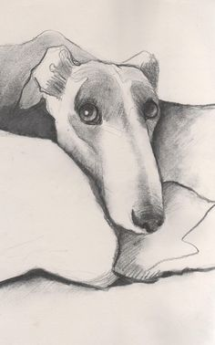 Custom Greyhound portrait Dog picture by McGlynnFineArt on Etsy, £40.00