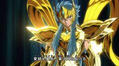 Saint Seiya Soul Of Gold - Camus by SONICX2011 on DeviantArt