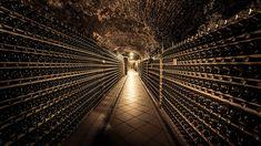 Das Gute liegt nah: Wer guten Wein und ein hübsches Boutique-Hotel sucht, sollte nach Palt an der Donau reisen. Spa Hotel, Boutique, Wine Country, Continents, Addiction, Cottage House, Boutiques