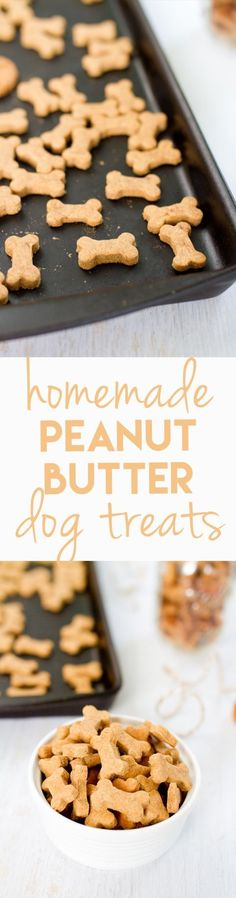 Making homemade snacks for your four-legged friend is a breeze with this simple peanut butter dog treat recipe. Pups will love the peanut butter flavor! @KaufmannsPuppy